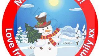 Xmas Snowman Cake Topper