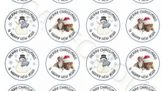 Xmas x24 Cupcake Toppers