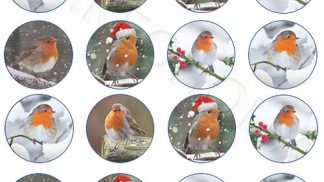 Xmas Robin x24 Cupcake Toppers