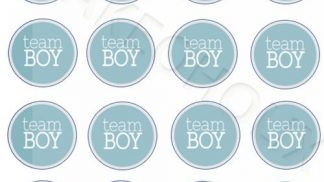 Cakeoholix Gender Reveal Team Boy Cupcake Toppers