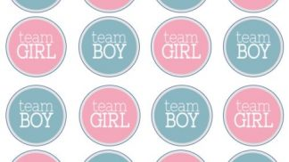 Cakeoholix Gender Reveal Cupcake Toppers