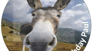 Animal Donkey Cake Topper