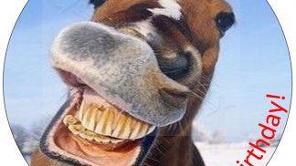 Animal Horse Cake Topper